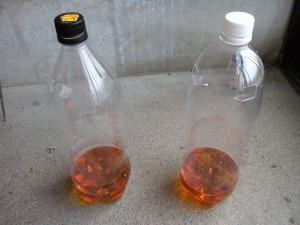 ペットボトルで作るスズメバチトラップ