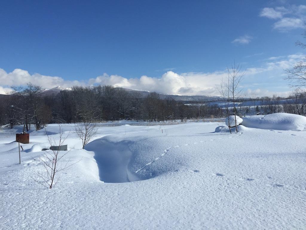 真冬の富良野布礼別